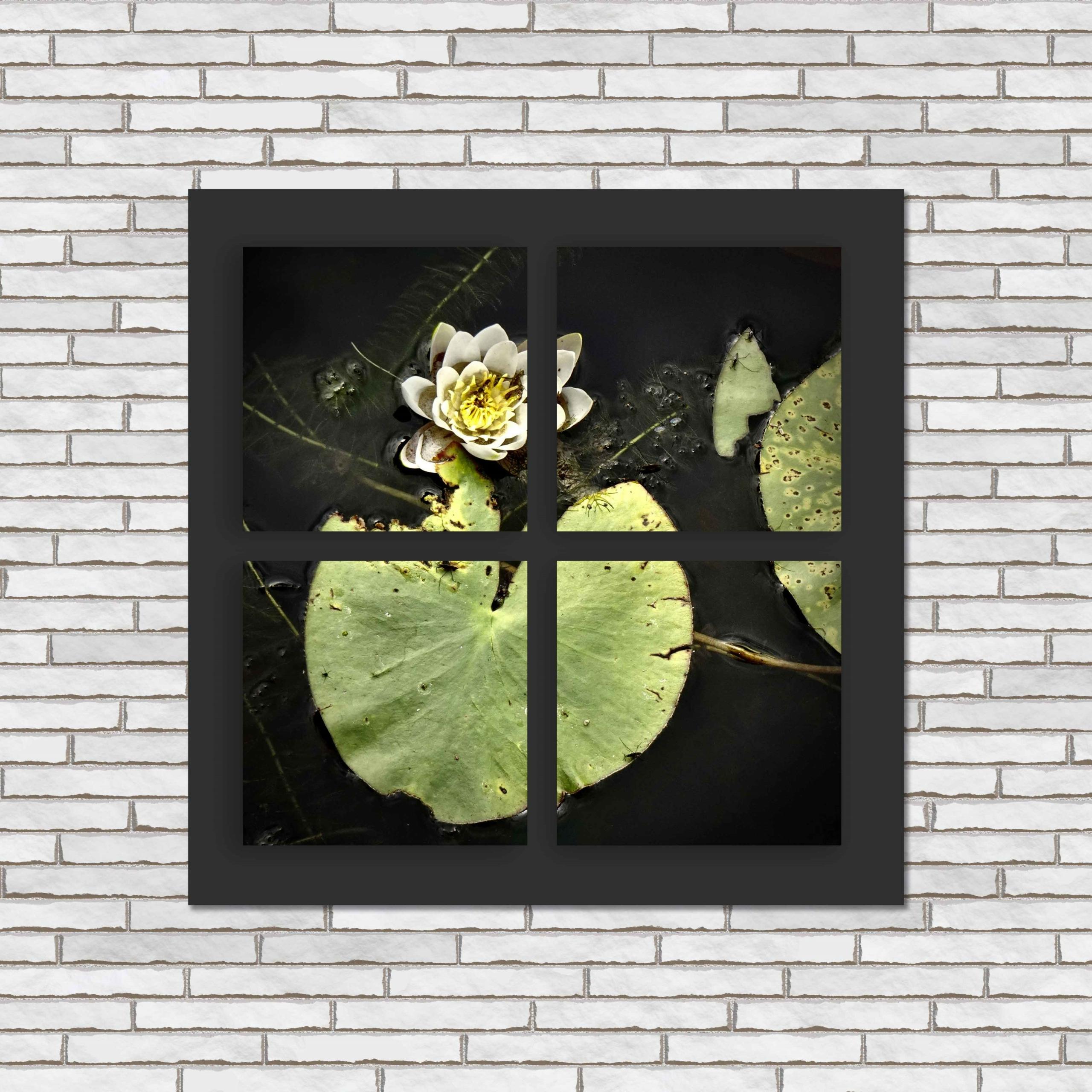 wall black 4 glaneur c 1 scaled